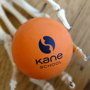 kane_school_pilates